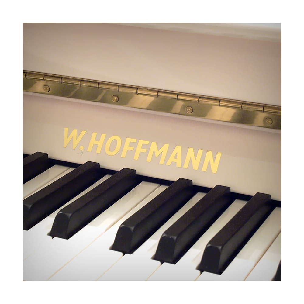 Hoffmann Vision V-112 белое, полированное - фото 3