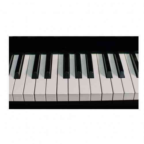 Акустическое пианино Weber W131 черное, полированное #3 - фото 3