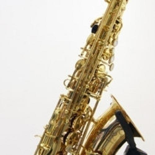 Альт-саксофон Trevor James SR 374SR-RK #1 - фото 1