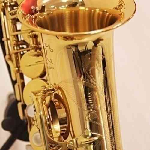 Альт-саксофон Trevor James SR 374SR-RK #2 - фото 2