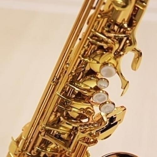Альт-саксофон Trevor James SR 374SR-RK #3 - фото 3