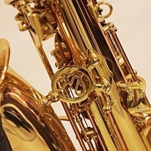 Альт-саксофон Trevor James SR 374SR-RK #4 - фото 4