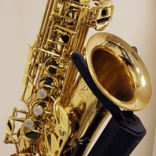 Альт-саксофон Trevor James SR 374SR-RK #6 - фото 6