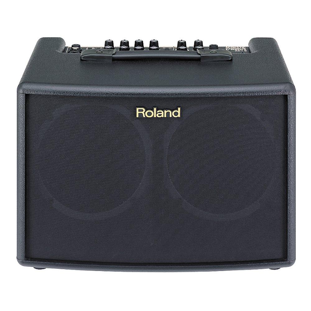 Roland AC-60 - фото 1