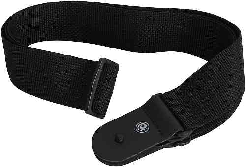 Planet Waves PWS100
