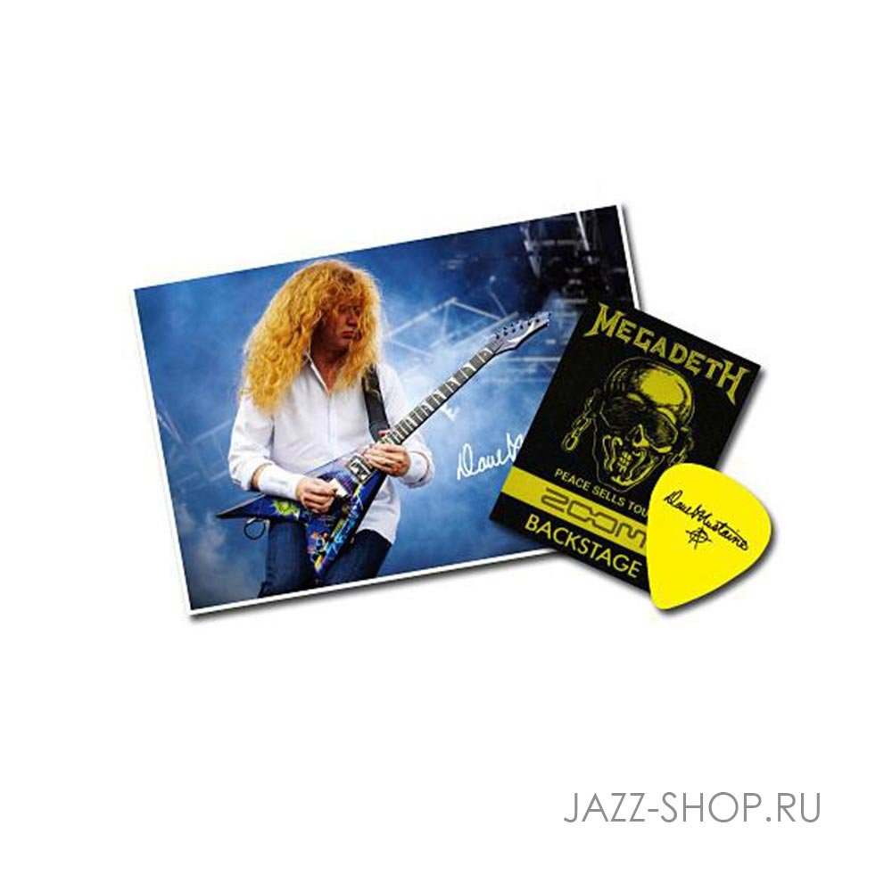 ZOOM G2.1DM (Dave Mustaine) + AD16 - фото 2