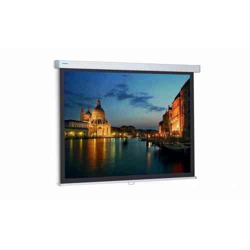 Projecta ProScreen (10200023) 139х240 см
