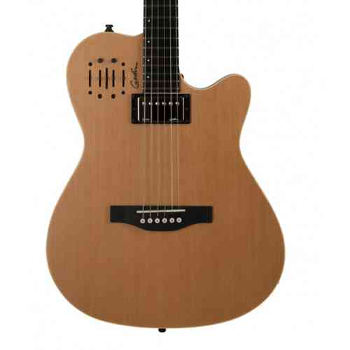 Godin 030293 A6 Ultra Natural SG