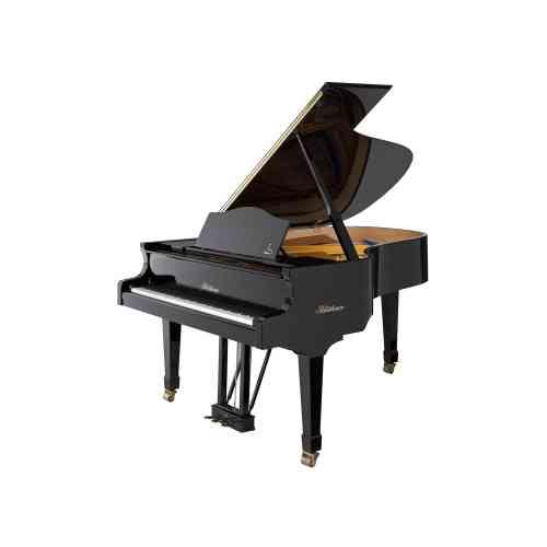 Blüthner Grand piano 166