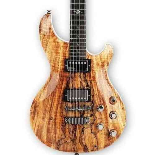 Dean USA Hardtail SPM Exotic spalted