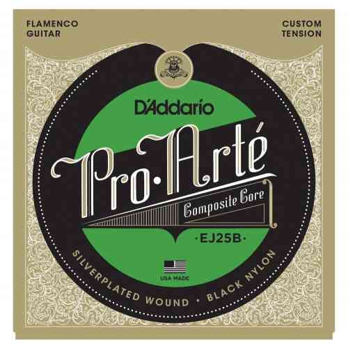 D`Addario EJ25B Flamenco