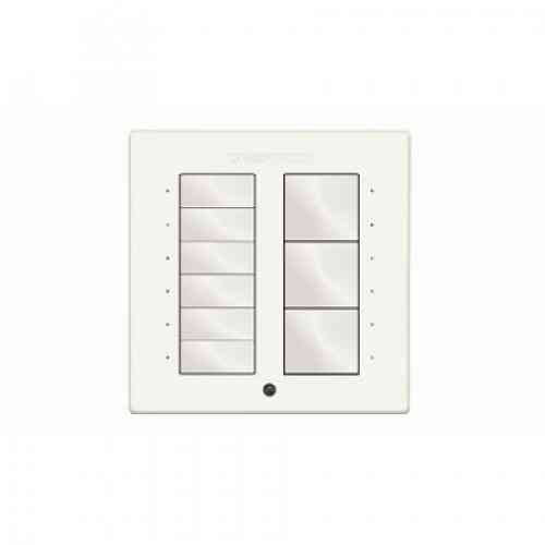 Crestron P-CBI-WIRED-W-T