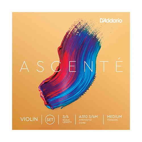 D`Addario A310 3/4M Ascente