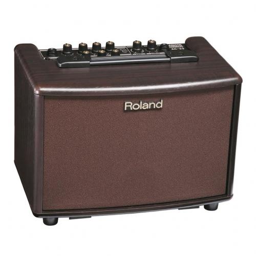 Roland -AC-RW - фото 1