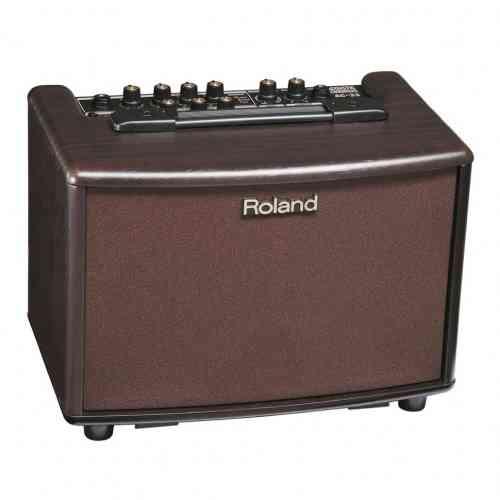Комбоусилитель для акустической гитары Roland -AC-RW #1 - фото 1