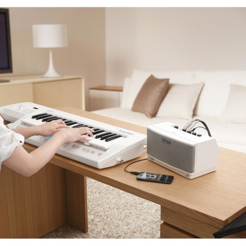 Комбоусилитель для электрогитары Roland CUBE-LM-WH #4 - фото 4