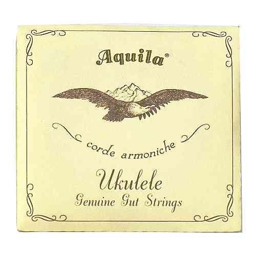 Aquila 43U Banjouke