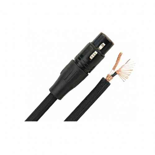 MONSTER CABLE SP1000-M-10